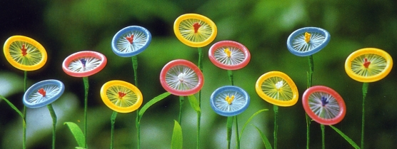 condoms image